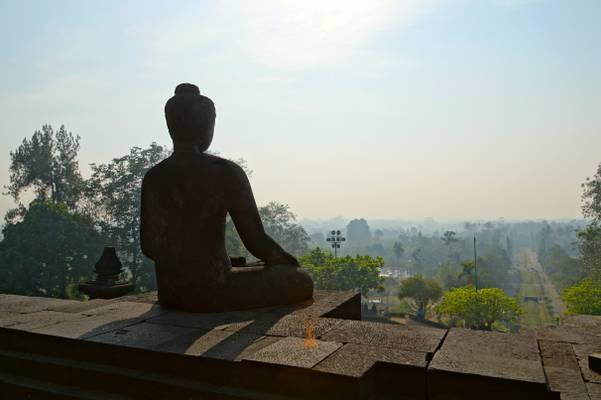 Buddha facing the jungle, Borobudur, Java, Indonesia