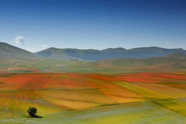 Nature Reserve - Monti Sibillini - Pian Grande