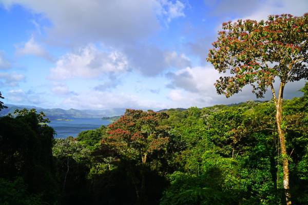 Mirador Lago Arenal