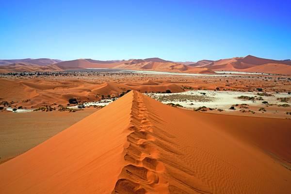 Big Mama Dune, Sossusvlei