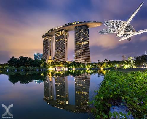 Dragongfly Park, Singapore