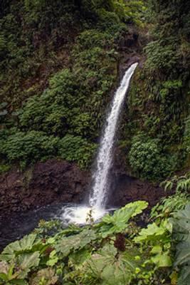 LaPaz Waterfall [CR]