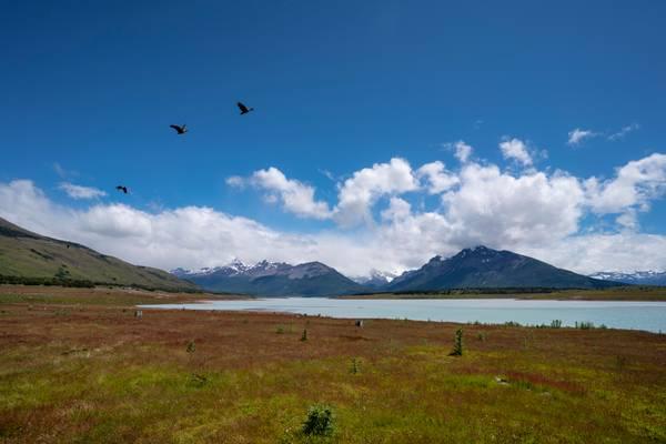 Lago Roca, Patagonia