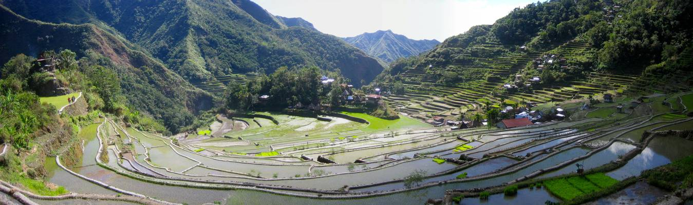 Rice terraces near Banaue, Batad, Cordillera, North Luzon, Philippines