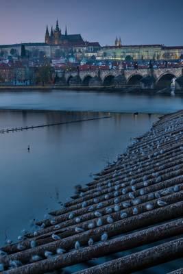 Prague Castle over wooden barriers