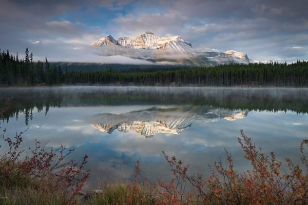 Hector lake morning