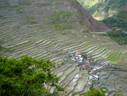 Rice terraces near Banaue, Batad, Cordillera, North Luzon, Philippines