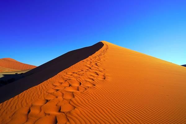 Steps on the crest of the Dune 45, Sossusvlei, Namibia