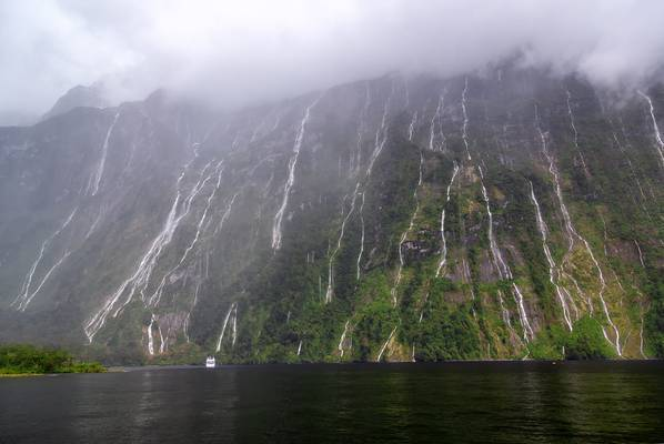 Water Falls at Milford Sound