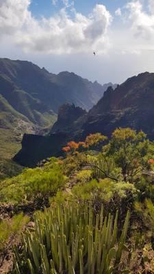 Above Santiago del Teide