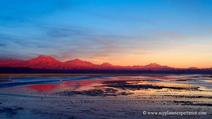 Laguna de Chaxa at sunset - Salar de Atacama, Chile