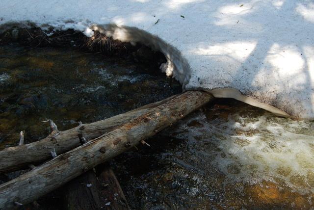Trail crossing stream below Comache Lake, Comanche Peak Wilderness