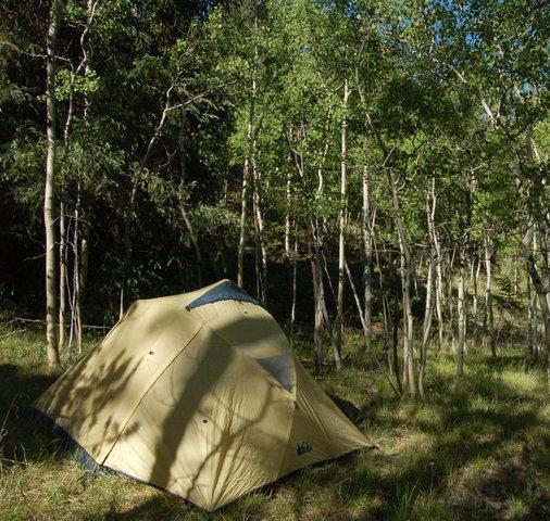 Camp in Refrigerator Gulch, Lost Creek Wilderness