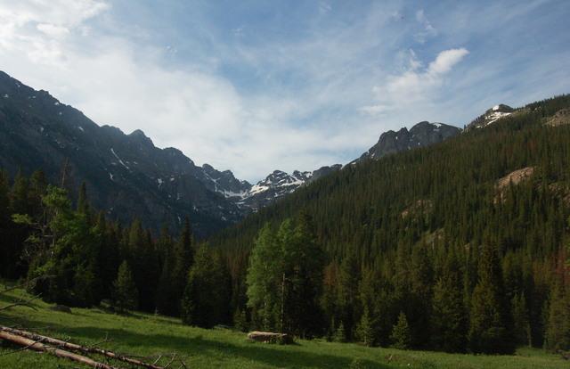 Meadow above Buchanan Creek, Indian Peaks Wilderness