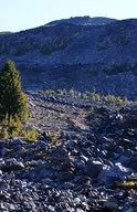 Willy pumps water from Morrison Creek, Mount Adams Wilderness