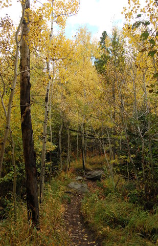 Fall colors on Lumpy Ridge, Rocky Mountain National Park