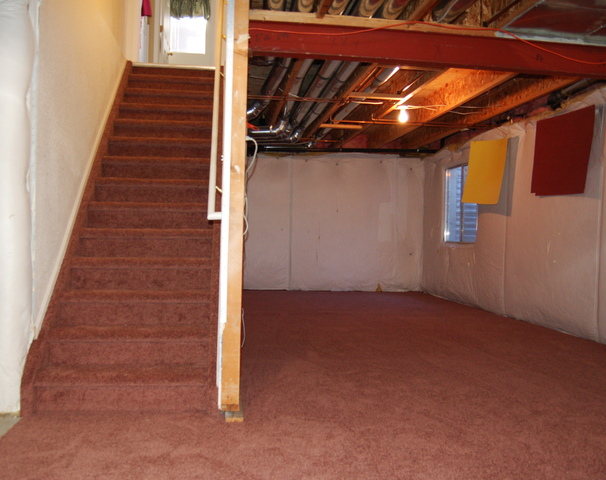 Looking up the stairs in the newly-carpeted basement