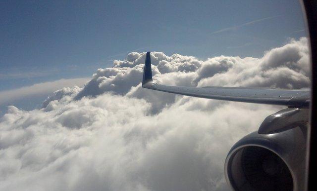 Wing of N*118