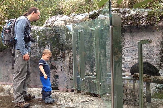 Jaeger and Calvin look at a bear at the Taipei Zoo