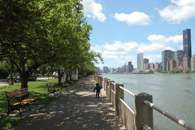 Calvin runs along the East River