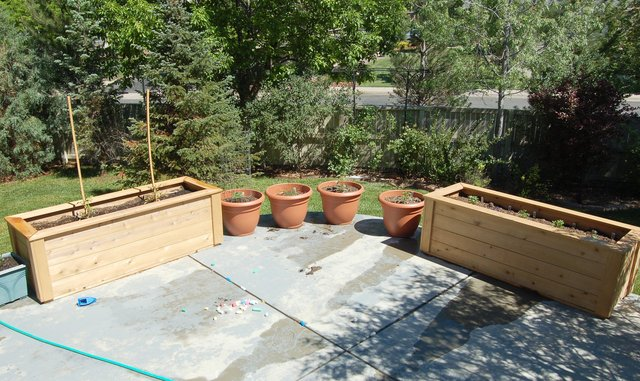 Completed container garden on patio