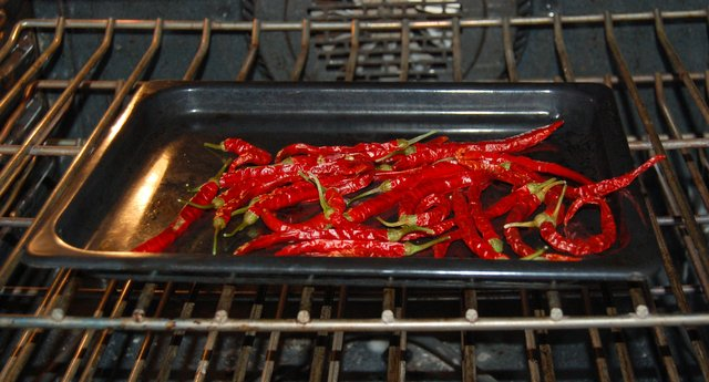 Chili peppers drying in oven