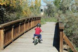 Calvin rides his pedal bike across a bridge