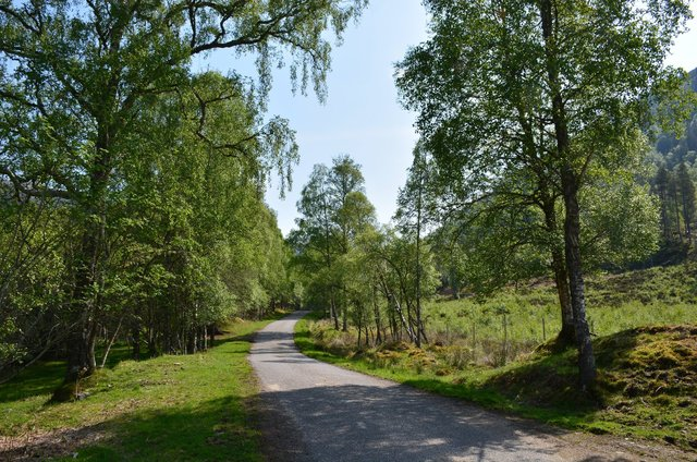 Country lane along the River Cannich