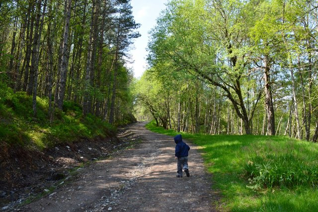Calvin hikes in Scotland