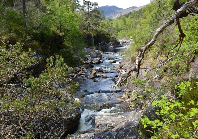The River Affric
