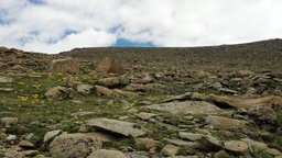 South slope of Mummy Mountain