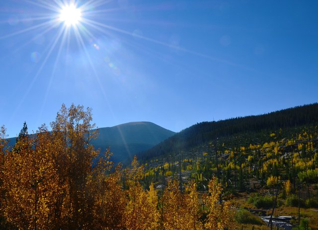 Fall colors in Wild Basin