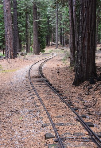 Leoni Meadows train track winding through the forest