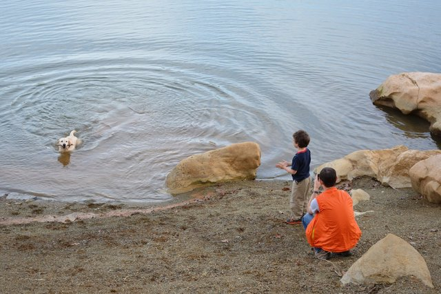 Tristan photographs Calvin playing fetch with Banner at Lake Cherokee