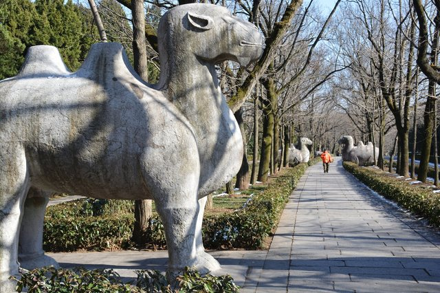 Stone camel on the Sacred Path