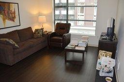 Temporary apartment living room