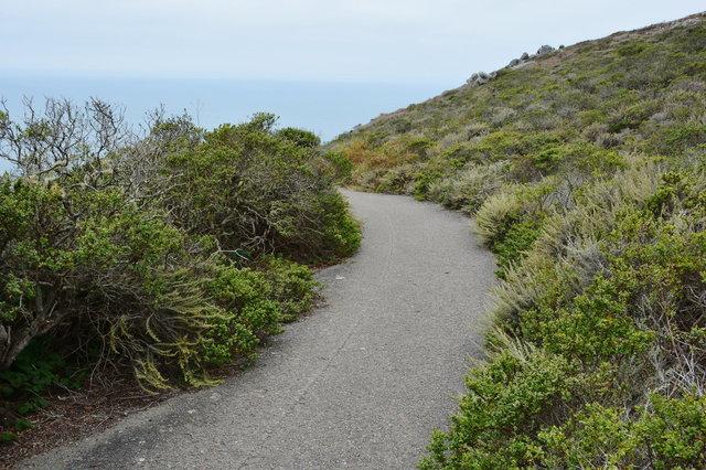 Coast trail, Marin Headlands, Golden Gate National Recreation Area