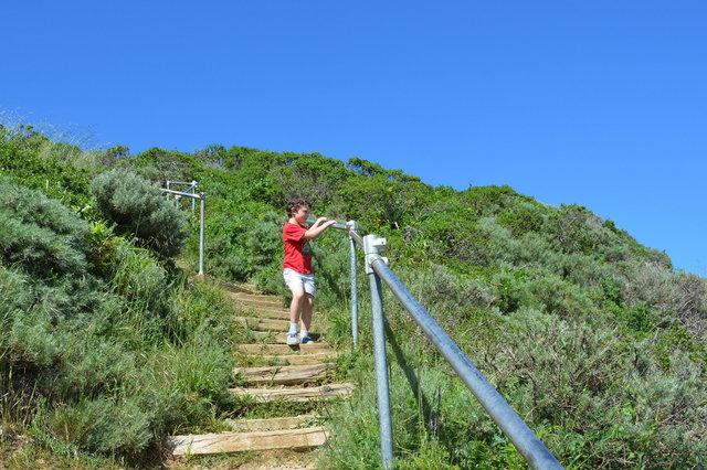 Calvin descends the trail