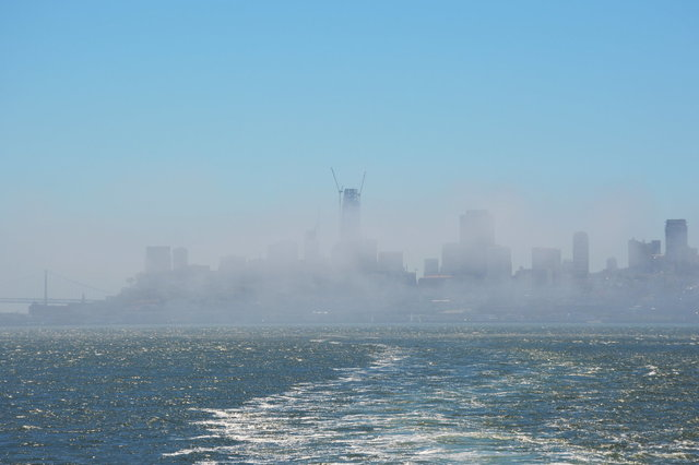 San Francisco skyline in fog