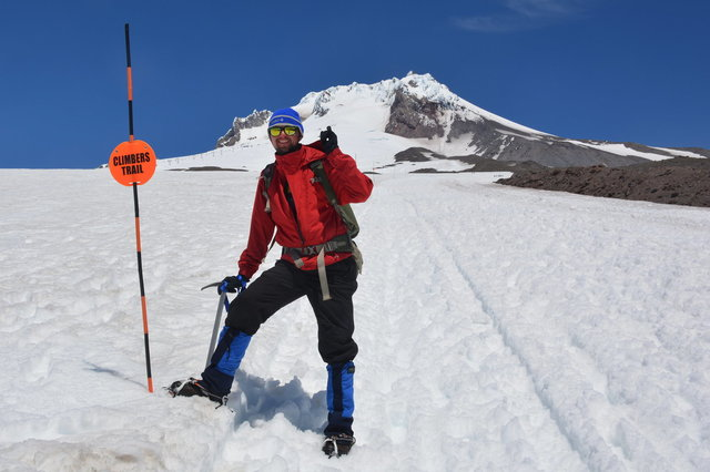 Willy on the climber's trail at Mount Hood
