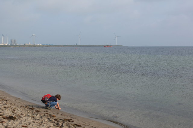 Calvin plays in the sand at Amager Strandpark