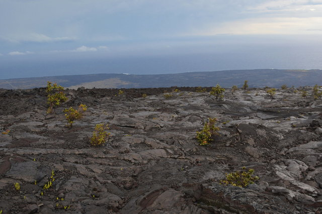 1972 lava flow above the Holei Pali and the ocean