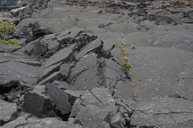 Craked lava in Kilauea Iki Crater