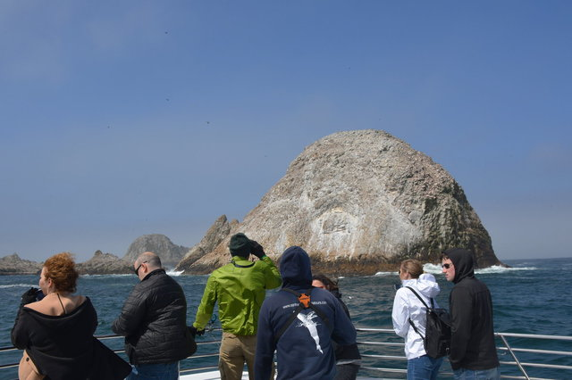 Whale-watching tourists at the Faralon Islands