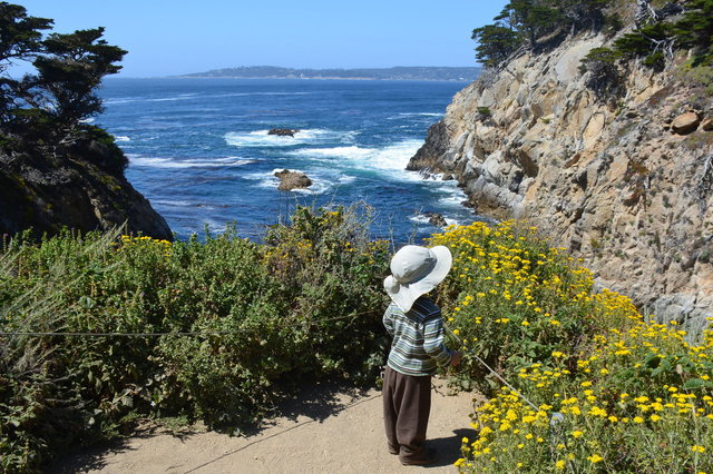 Julian looks over the ocean at Point Lobos