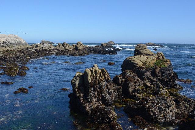 Waves break on Asilomar State Marine Reserve