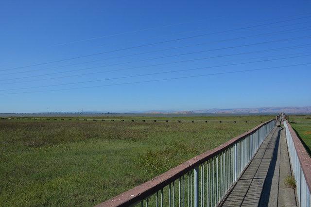 Boardwalk with the Dumbarton Bridge in the distance