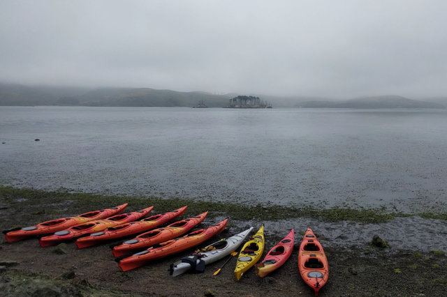 Kayaks lined up to launch on Tomales Bay