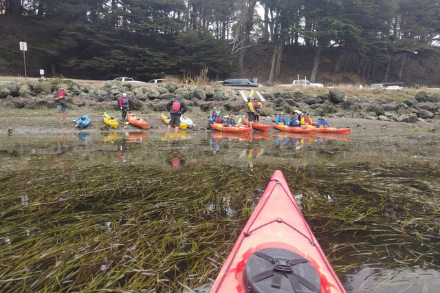 Kayaks launch from Tomales Bay