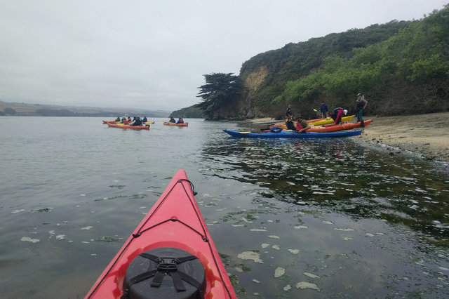 Kayak tour launches from beach on Tomales Bay